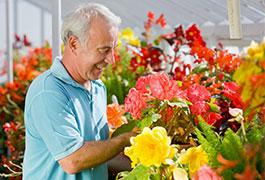 Richard Jackson, Wow Flower